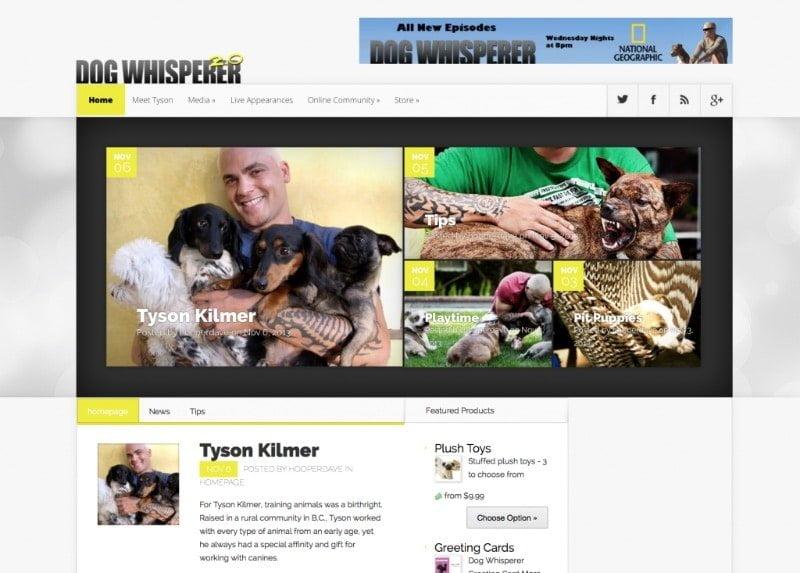 Dog Whisperer 2.0 Website Screenshot